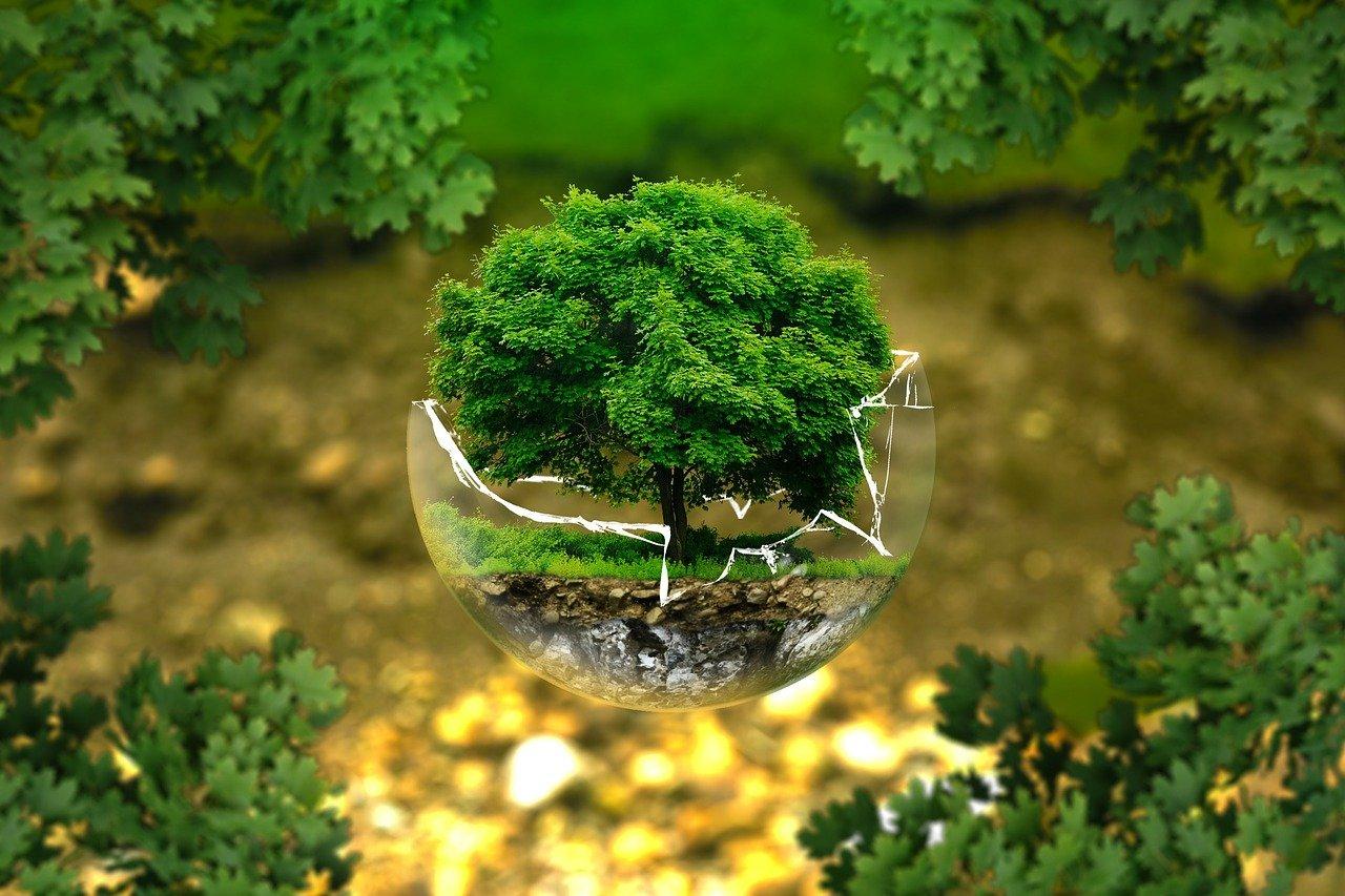milieu bescherming bol